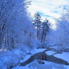 Фотографии Природа